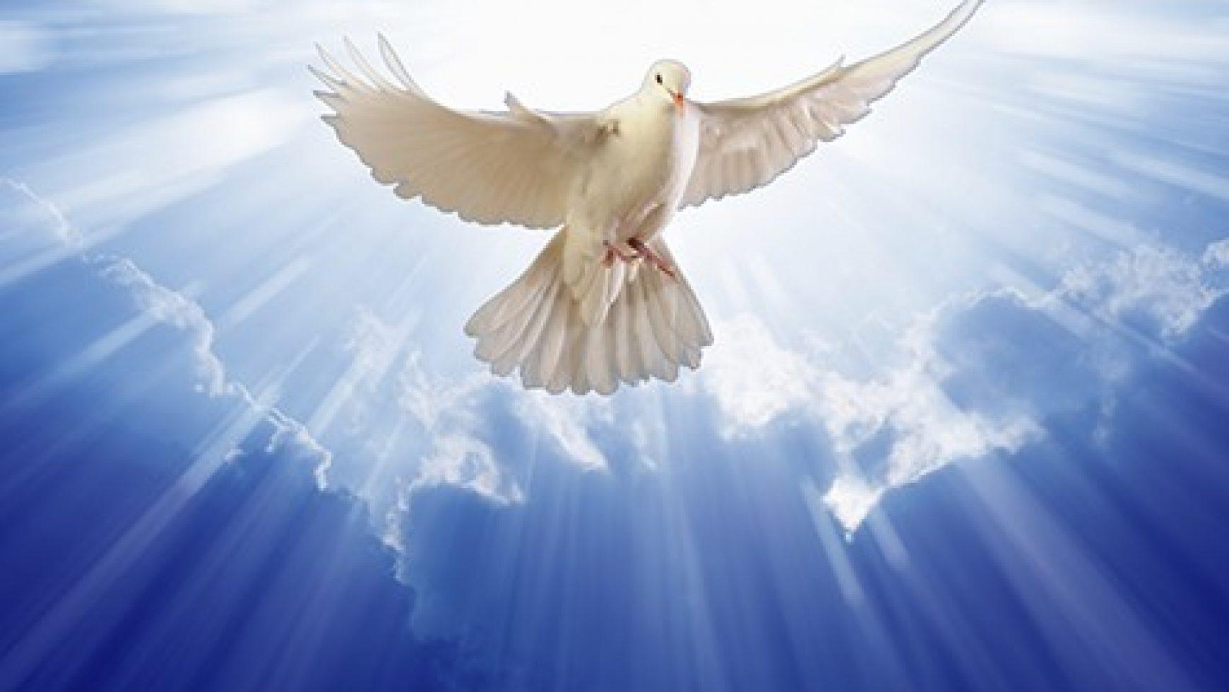 Trois conseils du Saint Esprit
